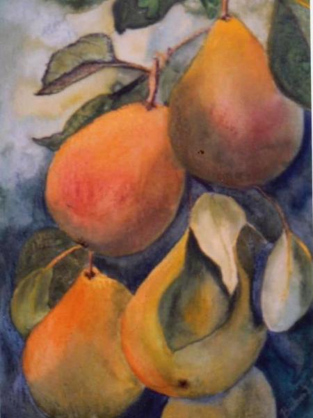 Comice Pears - SOLD