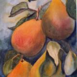 Comice Pears - SOLD