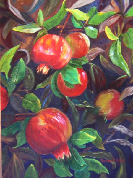 Pomegranate Tree - SOLD