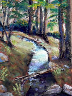 Creek at Wild Animal Park