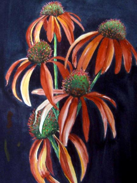 Meadowbright L'Orange SOLD