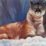 Cougar in the Snow I